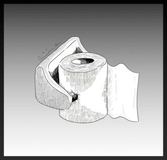 paper_toilet